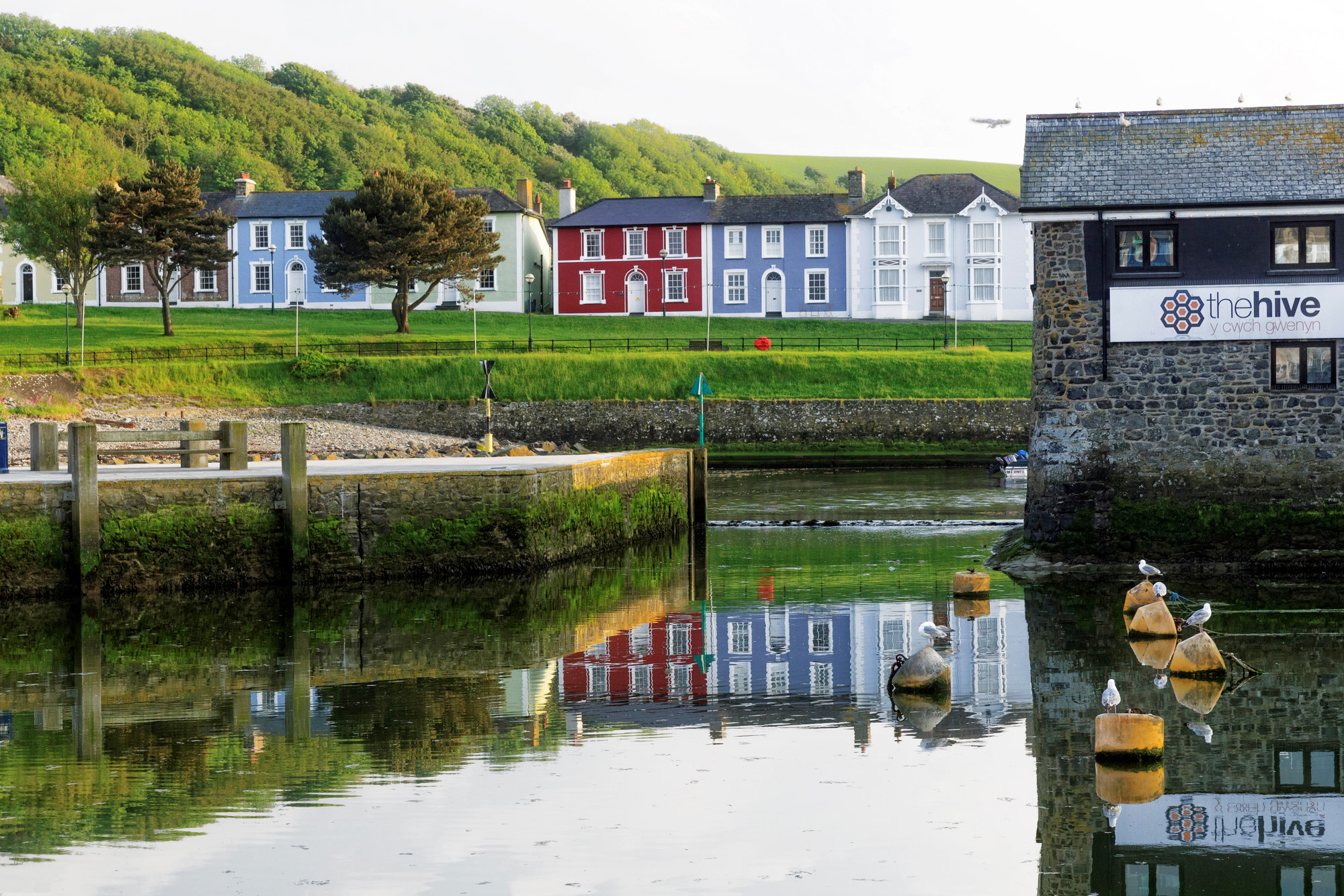 The Hive Aberaeron Harbour by ©Janet Baxter