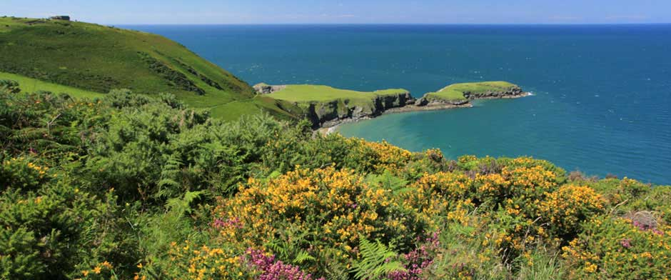 Cardigan Bay Coast and Country Visitor Information