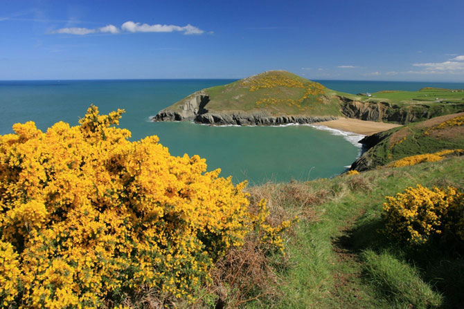 Cardigan. Holiday cottages West Wales Mwnt Holiday Cottages Mwnt