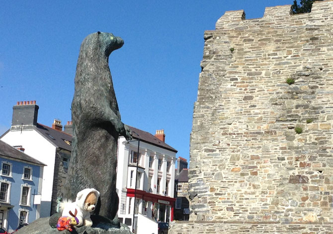 The Cardigan Otter admiring Cardigan Castle