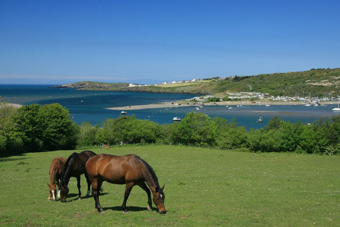 Poppit and Gwbert from St Dogmaels across the Teifi by Janet Baxter