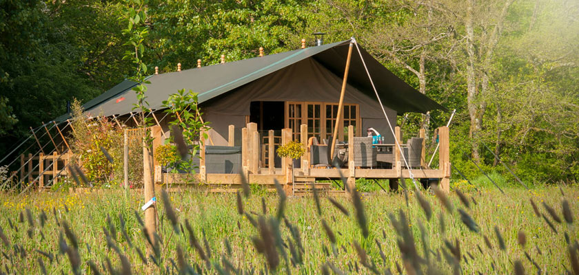 Safari tent glamping Cardigan Bay