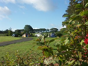 Beautiful Cardigan Bay Campsite