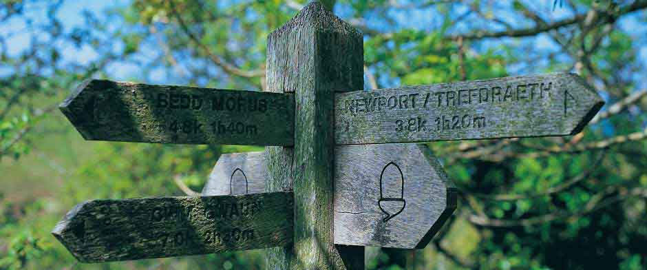 Explore Cardigan Bay and discover the beaches and footpaths