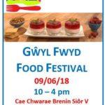 Newcastle Emlyn Food Festival 2018