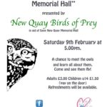 New Quay Birds of Prey