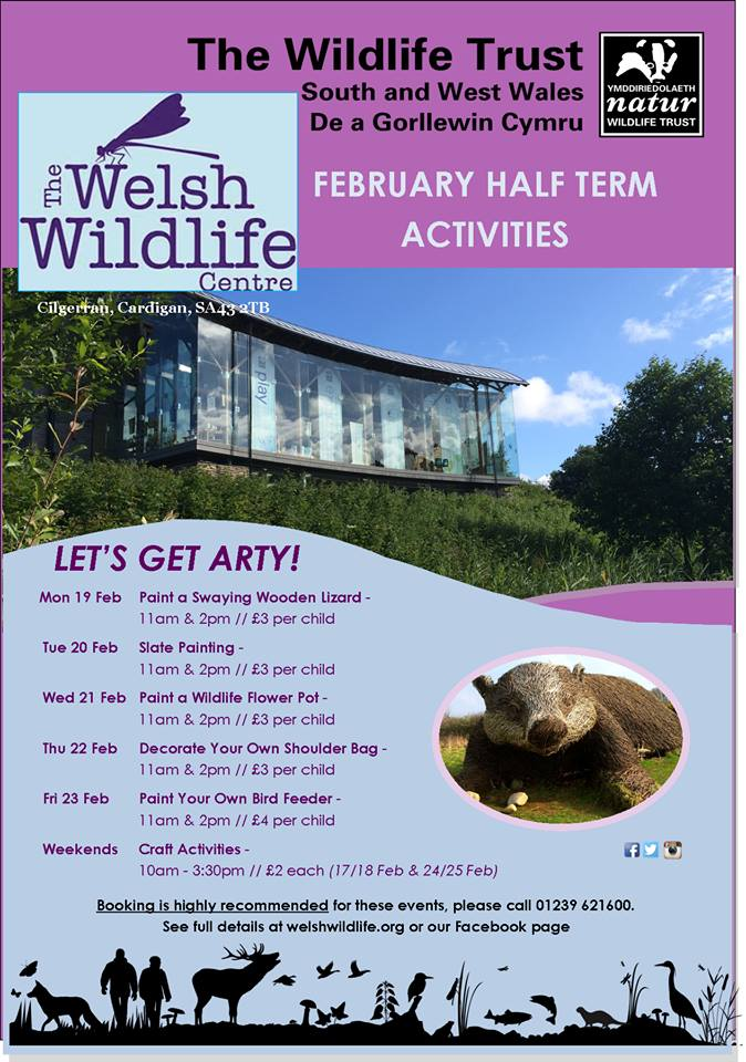 February Half Term fun at the Welsh Wildlife Centre!